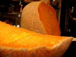 Mimolette dressed in a stunning shade of orange
