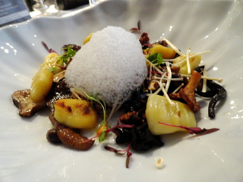 Mushroom étude with gnocchi and milk foam.