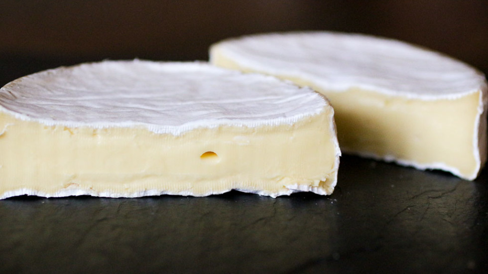 The lush Dinah's Cheese by Kurtwood Farms.