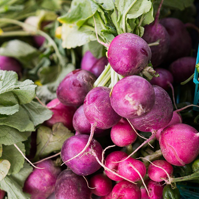 Some #colorful #radishes from the #farmersmarket! #farmfresh #sf