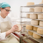 California Cheese Portraits With Gypsy Cheese Company
