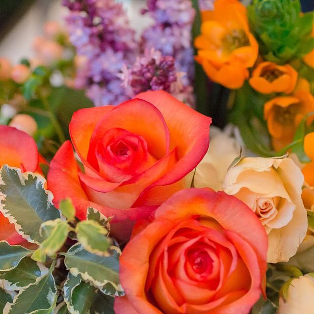 Loving this week's #fridayflowers! #flowersoftheday #flowers #blooms #florals
