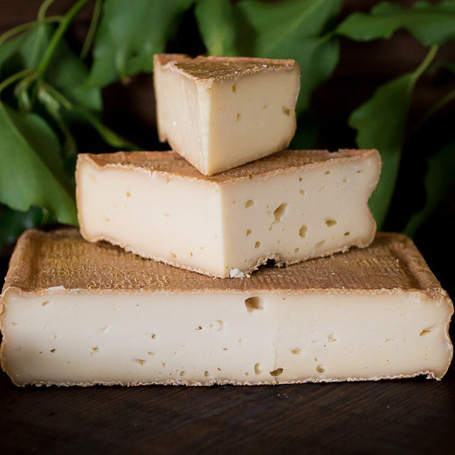 I am soooo in love with #gypsyrose by @gypsycheeseco! My recent visit and #photography session with them is on #misscheesemonger.com! #farmvisit #california #artisan #handmade #eatlocal #foodphotography #cheesemakers #valleyford #norcal #foodpics #foodblog #foodblogger #cheesetasting #cheese4life #rawmilk #instafood