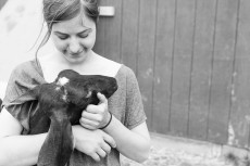 Visiting Dancing Goats Dairy in Massachusetts. Food Photography blog Miss Cheesemonger.