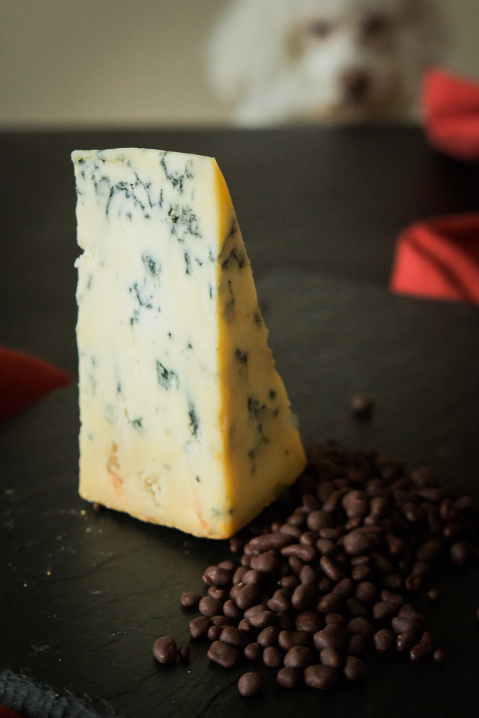 2015 holiday cheese-3748