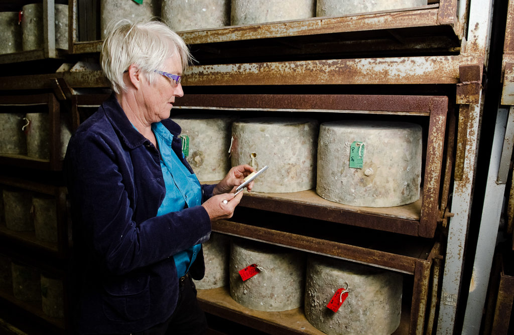 Catching up with Mary Quicke of Quicke's Cheese. Photo Courtesy of Quicke's. On misscheesemonger.com.