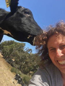 Meet the creator of the California Cheese Trail, Vivien Straus. By Vero Kherian for misscheesemonger.com. Image courtesy of Vivien Straus.
