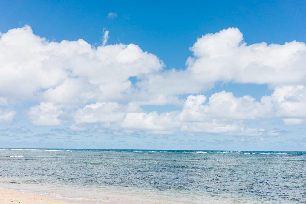 Visiting Kauai by Vero Kherian. misscheesemonger.com.