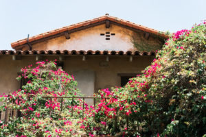 Visiting Mission San Juan Capistrano in Orange County. Vero Kherian for misscheesemonger.com.