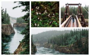 Visiting the Yukon Territory. By Vero Kherian for misscheesemonger.com.