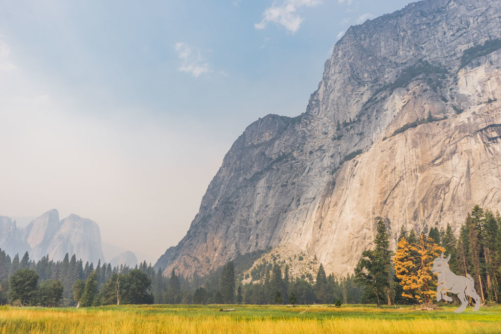 yosemite national park on misscheesemonger.com. By Vero Kherian.