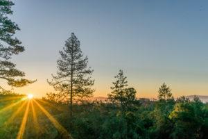 Camping food and adventures in Santa Cruz. By Vero Kherian for misscheesemonger.com.